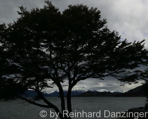 2013-12-09-NP-Tierra-del-Fuego-(64)